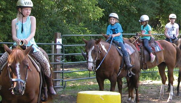Horse Camps | YMCA Twin Cities